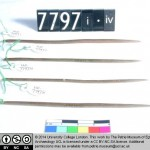 petrie-museum-needles