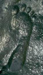 footprint-new-mexico